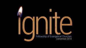 FEC-Ignite-2014